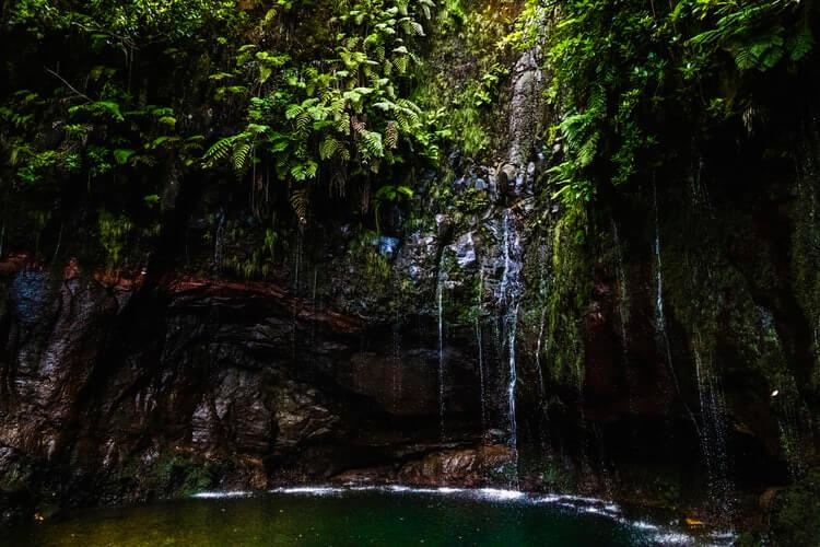 Madeira - raj na Zemlji